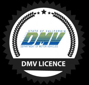 dmv-licence